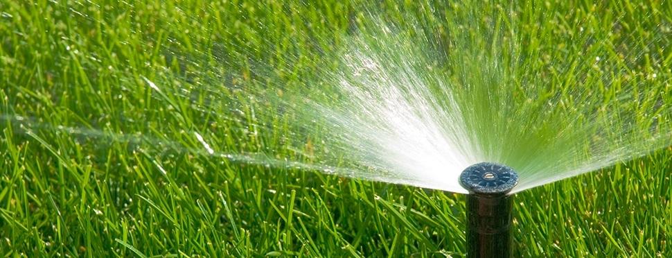 realizzazioni: Impianti di Subirrigazione