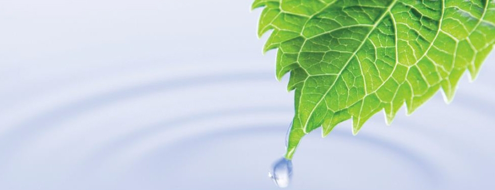 Recupero acque piovane